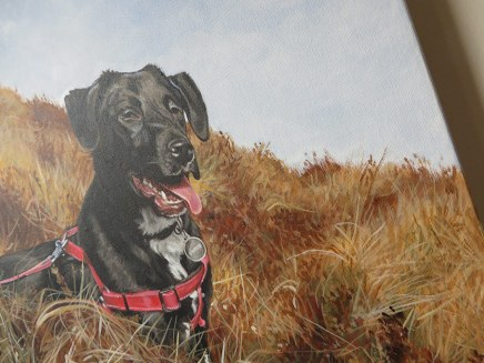 detail of a dog portrait