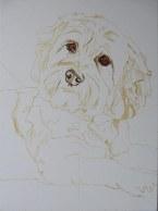 portrait progress1