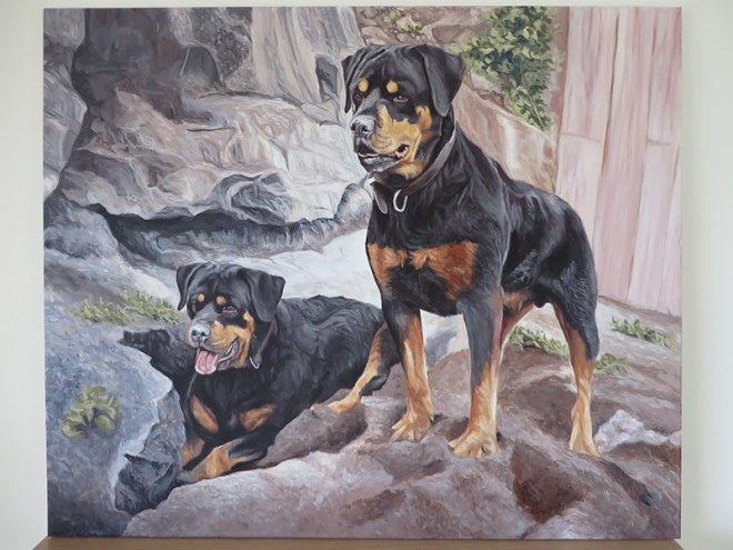 two rotties portrait