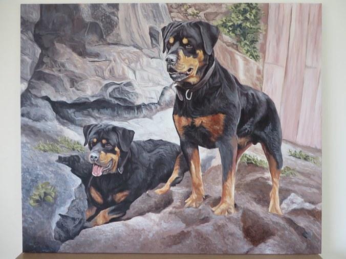 two rotties portrait