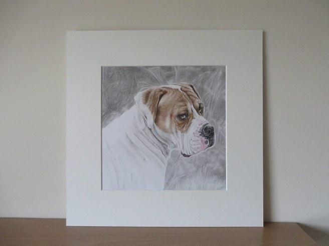 mounted dog drawing