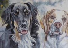 dog painting colour blocking