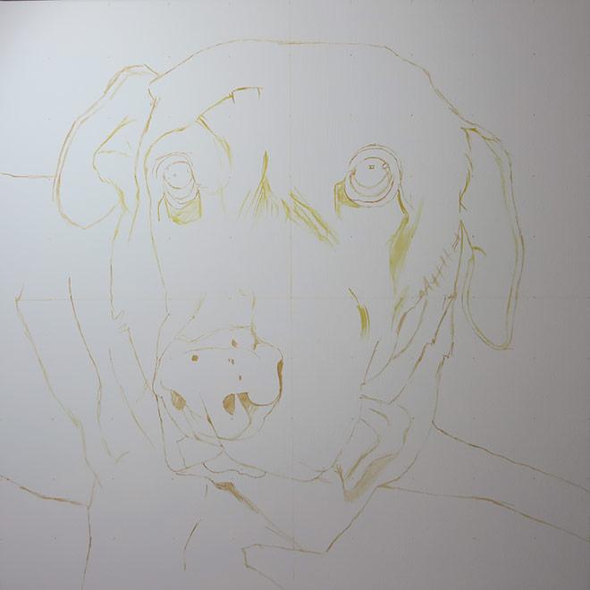 line sketch labrador