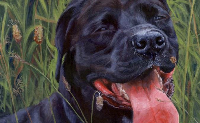 acrylic dog portrait detail