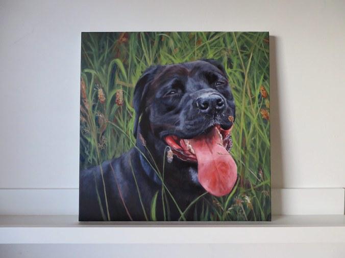 black labrador painting on canvas