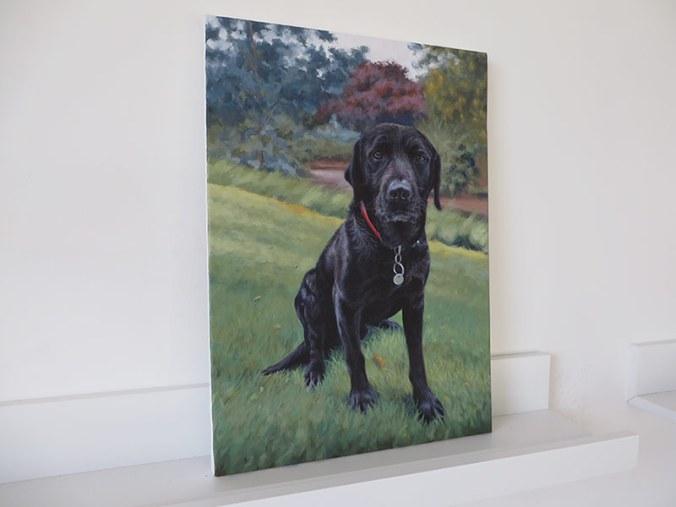 acrylic portrait of a labrador