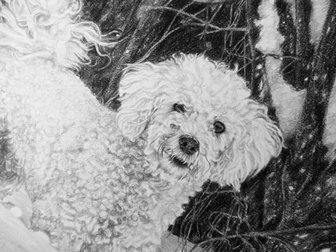 portrait close up