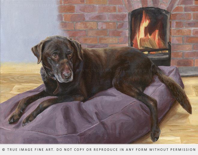 the finished portrait of Otto the brown labrador retriever