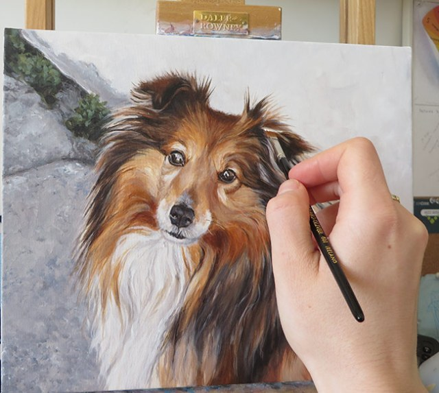 detailing a pet portrait