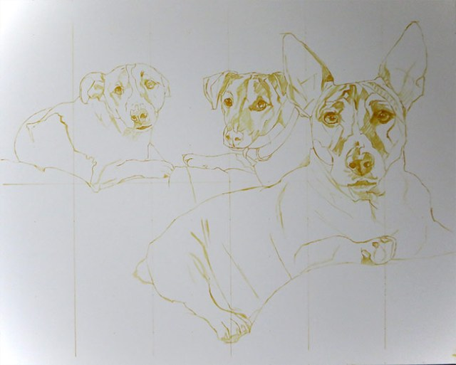 Initial sketch for a dog portrait