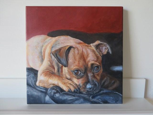 acrylic dog portrait on canvas