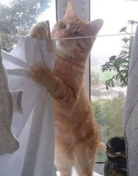 Suggest a caption for this pic.. :)