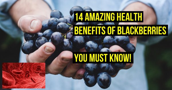 14 Health Benefits of Blackberries You Must Know