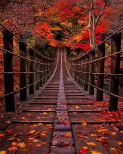 Stunning    Japan