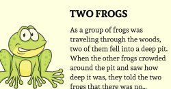 The Group of Frogs – Encouragement Story – Uplifting Stream