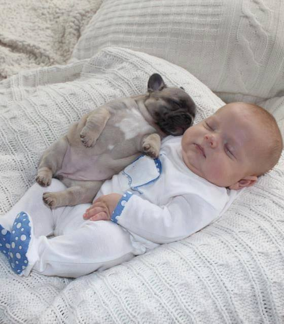 Oh my goodness!   How adorable are these two sleeping babies?
