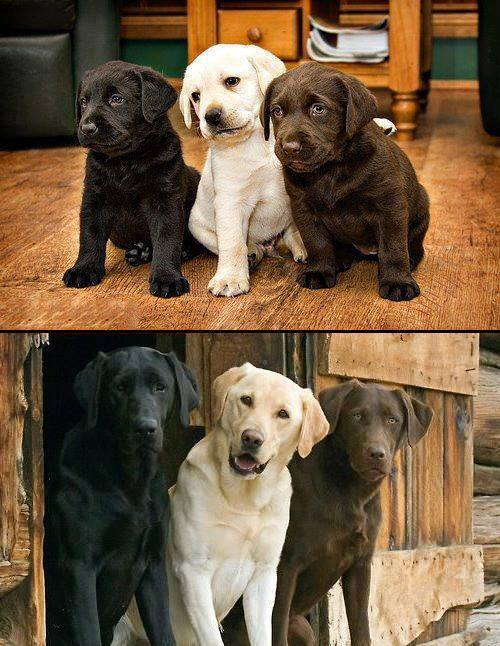 All grown up