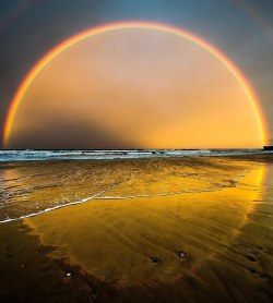 Have you seen a perfect rainbow like this before?  Burleigh Heads, Queensland, Australia