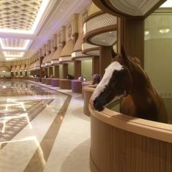 The world's most luxurious horse stable.. :o