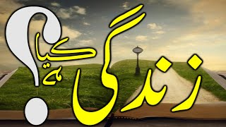 What is the True Meaning of Life? || Inspiration in Urdu || Motivation in Hindi || Parallel Media
