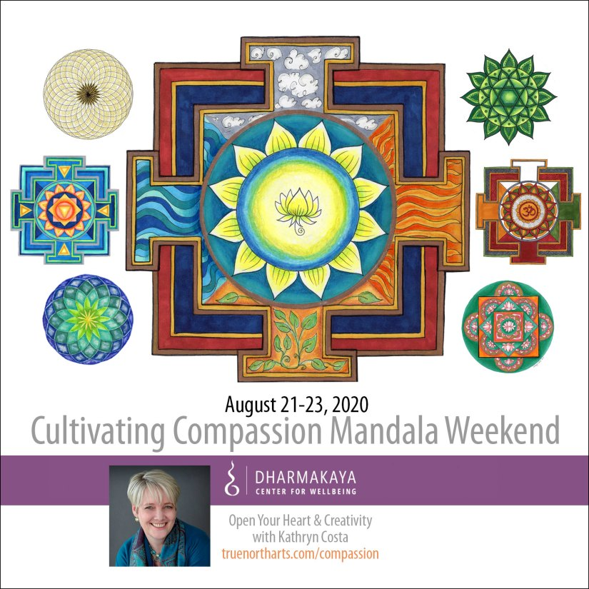 Create art to cultivate compassion