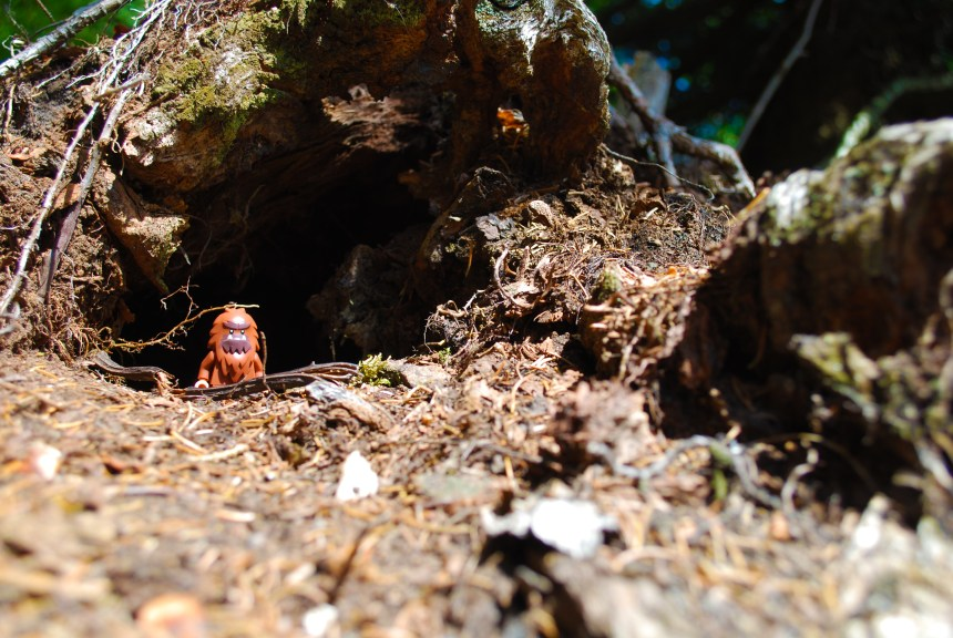 049 - Day 10 - LEGO Hiking