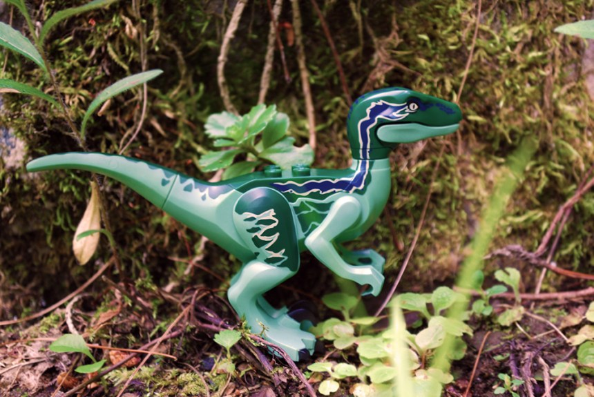 Raptor02WEB