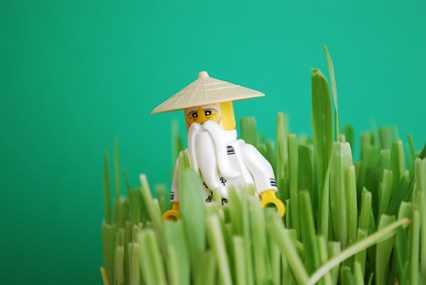 The original Master Wu photo used in this LEGO-fied project.