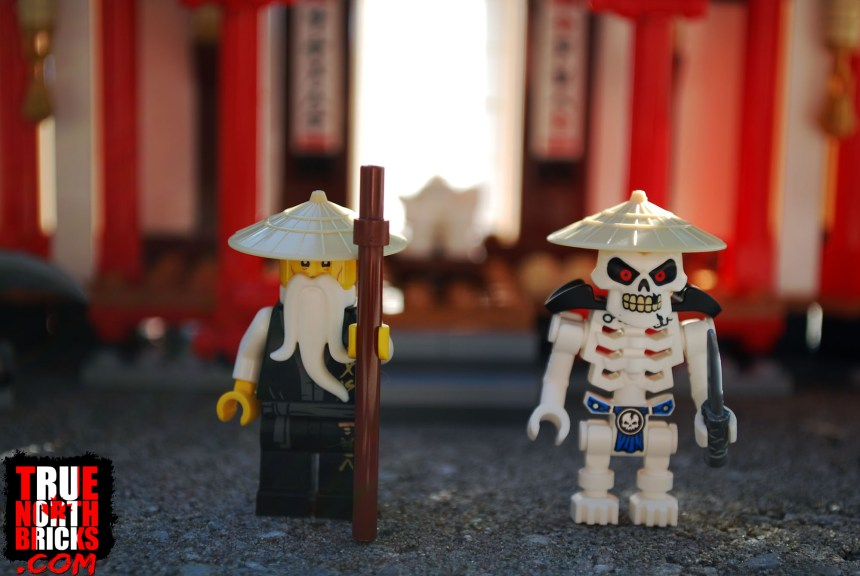 Front view of Sensei Wu and Wyplash