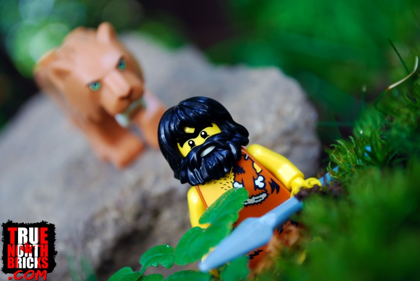 Just a sack of meat, a LEGO caveman Minifigure to a saber tooth cat.