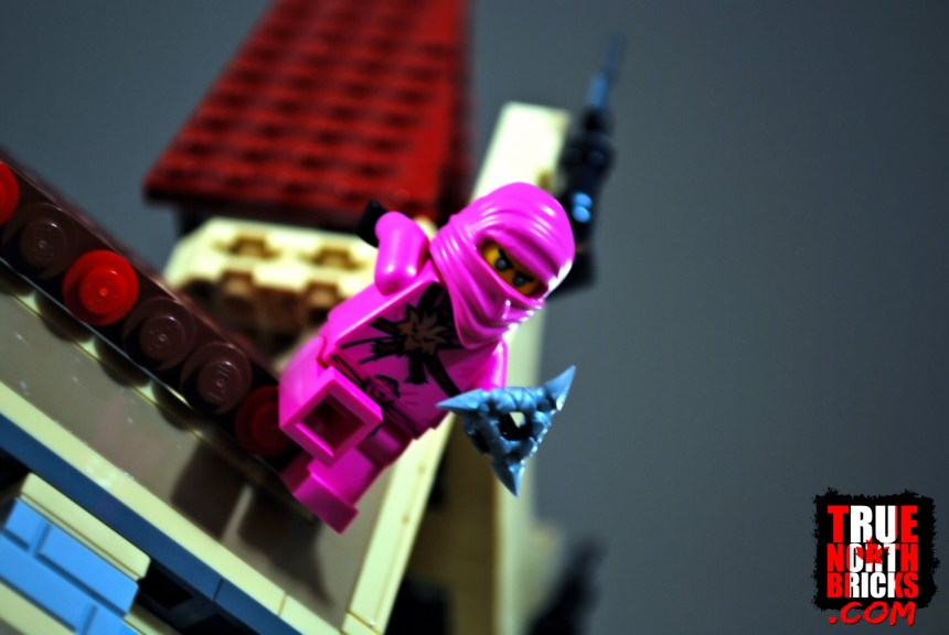 Avatar Pink Zane from Gamer's Market (71708).