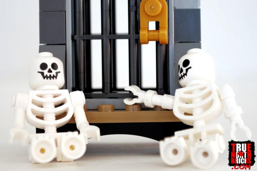 Old versus new skeletons.