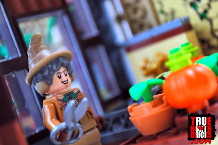 Herbology Class (76384) comes with a Professor Sprout that is similar to the one from the Minfigure Series.