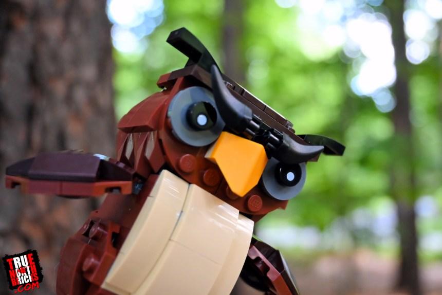 Halloween Owl (40497)
