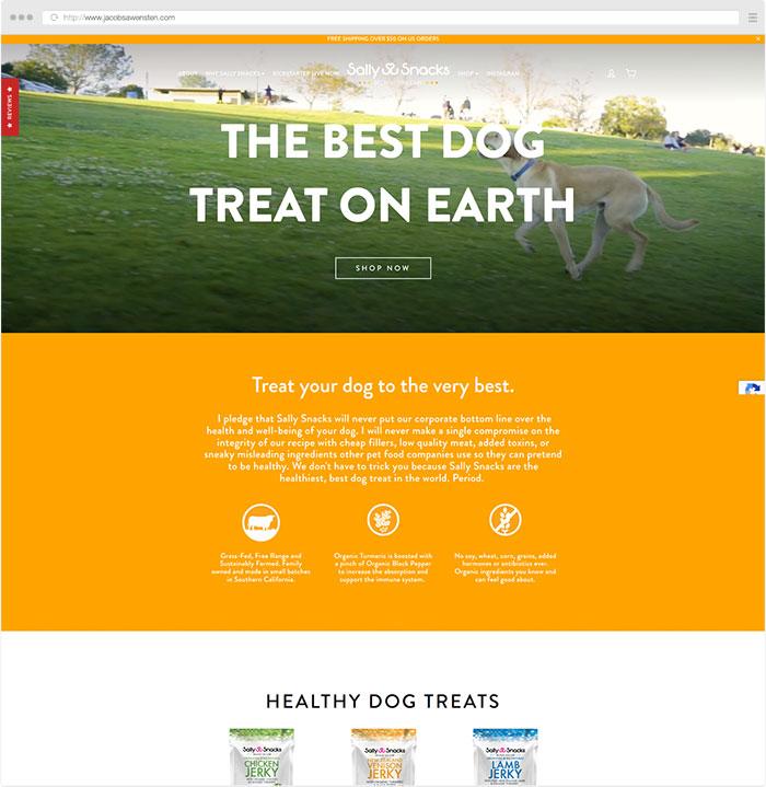 Los Angeles Website Design Examples