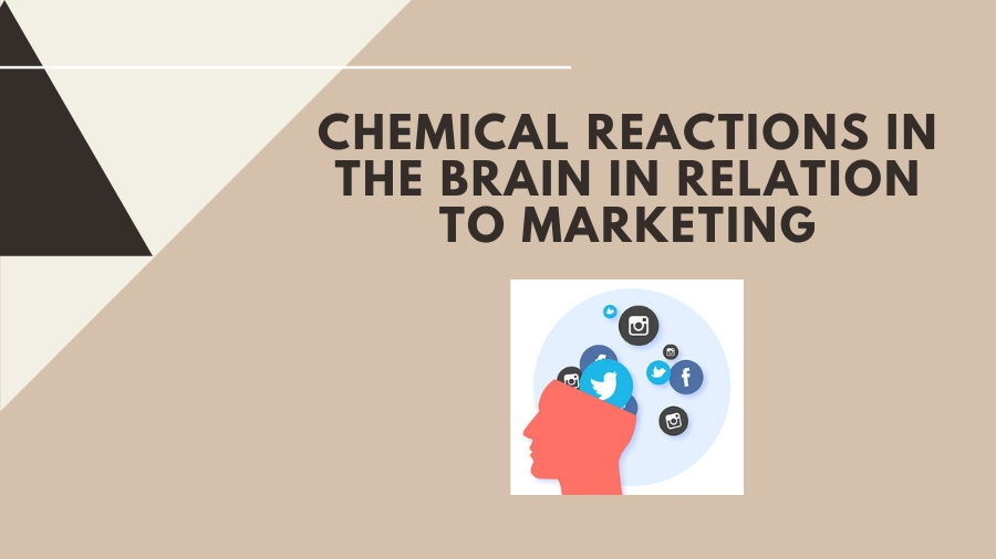 Chemical Reactions in the Brain in Relation to Marketing