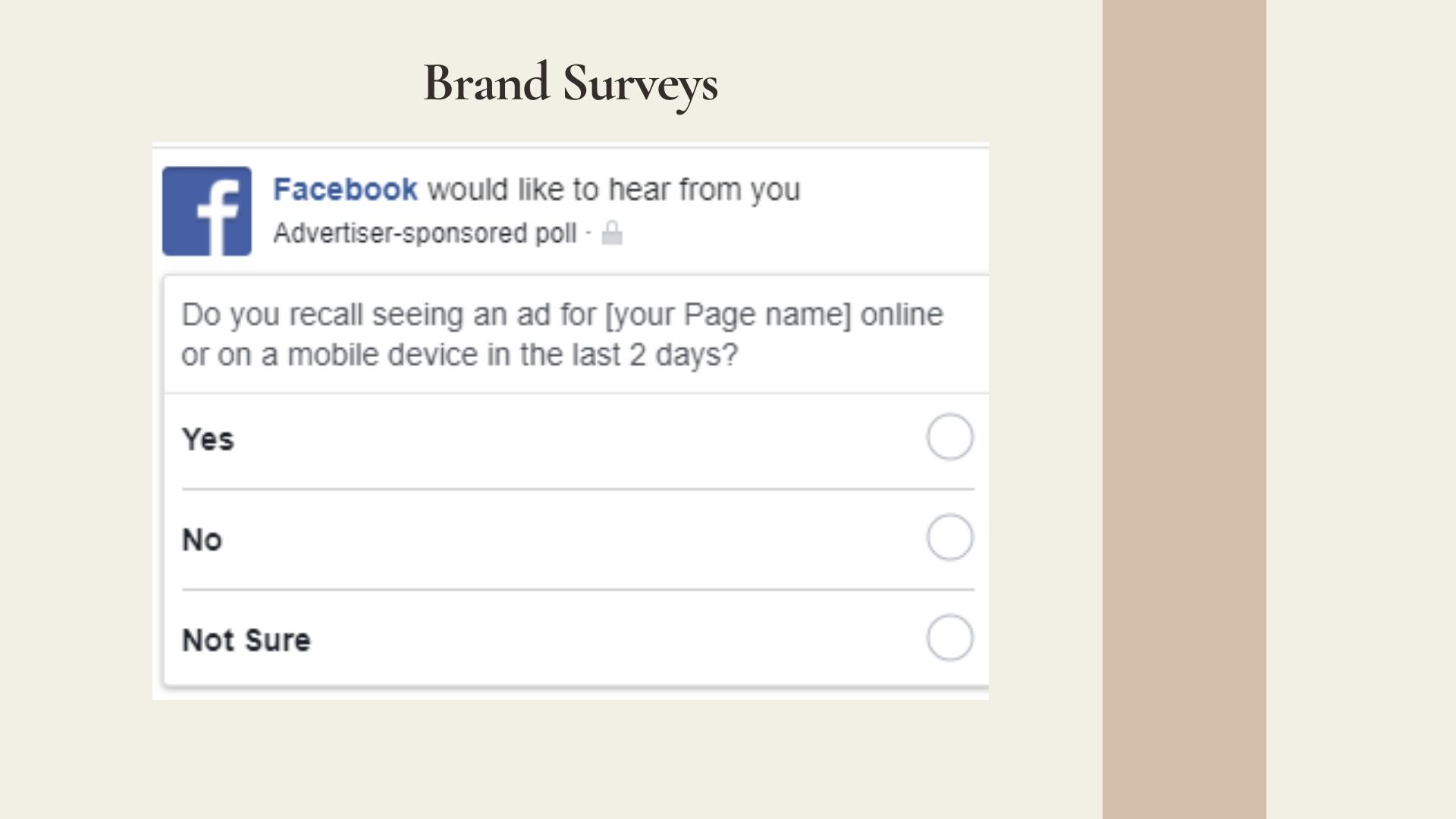 Brand Surveys