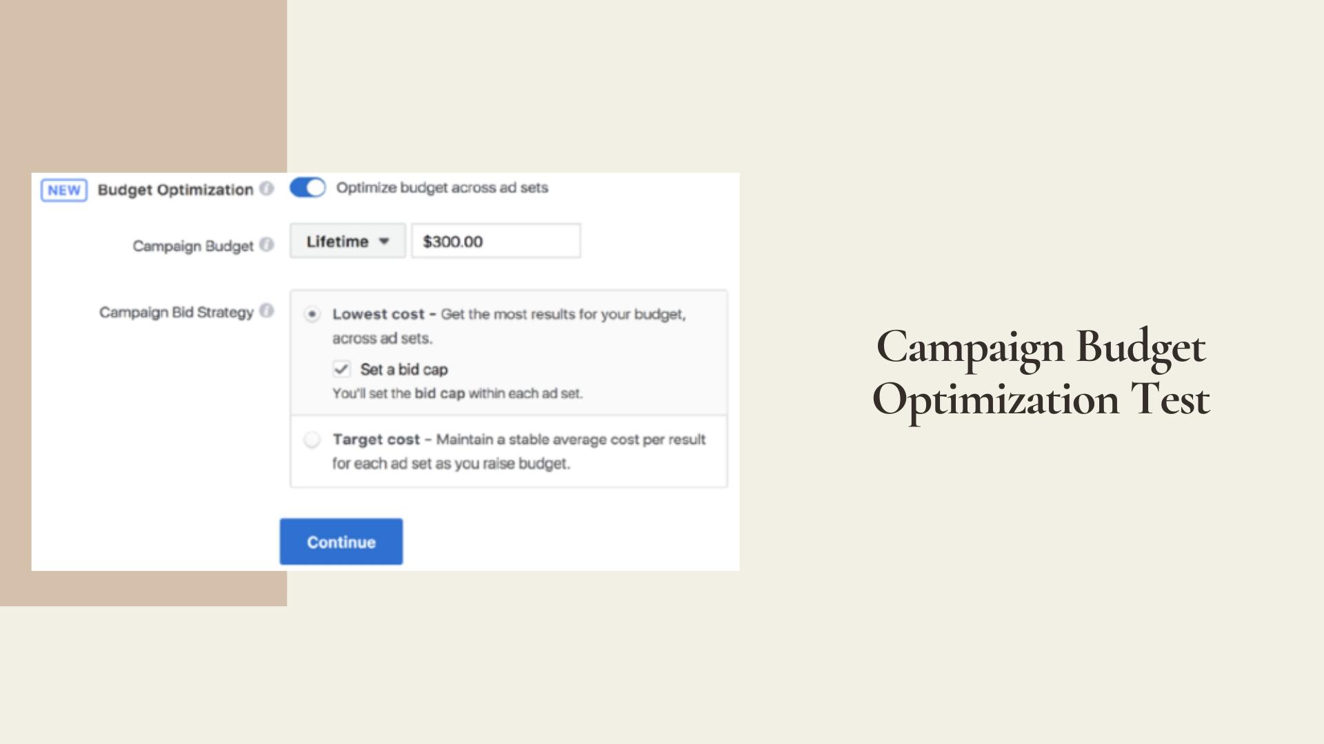Campaign Budget Optimization Test