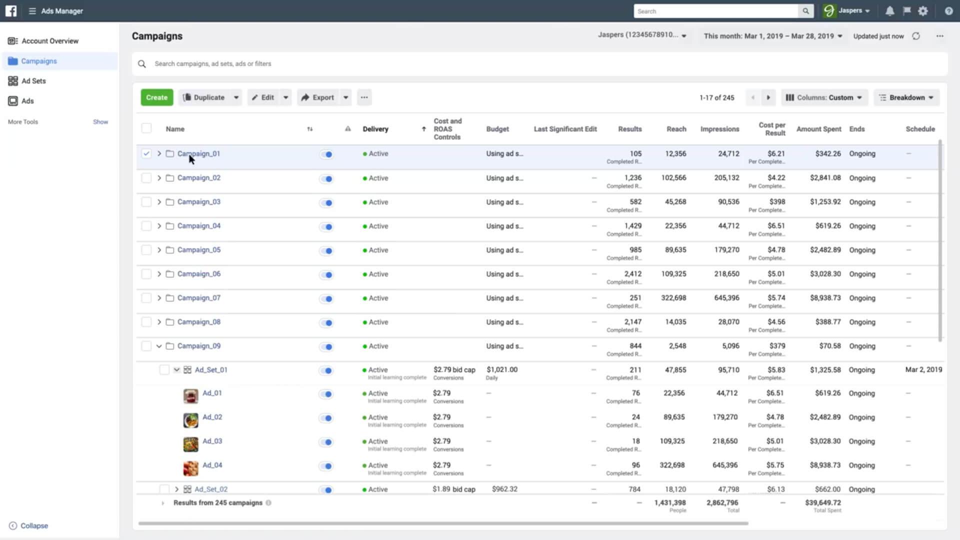 Facebook Ads Manager Platform