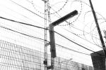 Serco: Rewarding Criminality and Failure