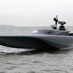 Showboating: Royal Navy test-drives new 'Batman' drone boat on Thames