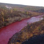 Plagues of Siberia: Russian Arctic river mysteriously turns blood-red