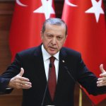 Turkish President Erdogan says country has not given up on joining EU, but has 'many other alternatives'
