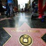 Trump Walk of Fame Star Under 'Secret Service-Like' Protection