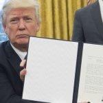 Establishment in full meltdown over Trump refugee orders