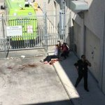 Gunman in custody after killing five and injuring six at Florida's Ft. Lauderdale-Hollywood Airport