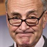 Schumer: I Wish Democrats Hadn't Triggered the 'Nuclear Option'