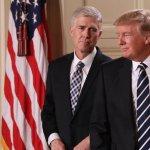 Neil Gorsuch: Conservatives Praise Trump's 'Home Run' Supreme Court Pick