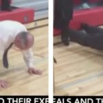 VIDEO: 83-Year-Old GOP Senator Blows Teenager Out Of The Water In Push-Up Contest