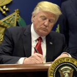 Appeals court denies Trump administration request to restore travel ban